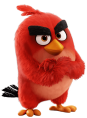 bird_red