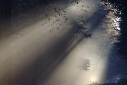 cahaya-matahari