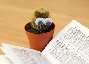 cactus read